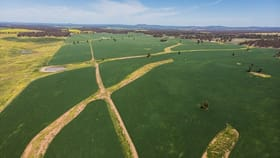 Rural / Farming commercial property for sale at 'Woodlands', 1777 Paynes Road North Yalgogrin NSW 2671