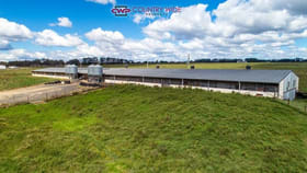 Rural / Farming commercial property for sale at 28 Whitmore Road Glen Innes NSW 2370