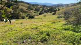 Rural / Farming commercial property for sale at 1019 The Bucketts Way Tugrabakh NSW 2422
