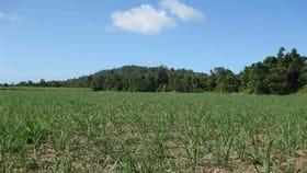 Rural / Farming commercial property for sale at 0 Granadilla Road Granadilla QLD 4855