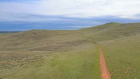 Rural / Farming commercial property for sale at * Watts Range Road Gulnare SA 5471