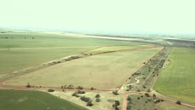 Rural / Farming commercial property for sale at 730sw Stevens  Road Snowtown SA 5520