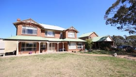 Rural / Farming commercial property for sale at 52 Piribil Street Jerrys Plains NSW 2330