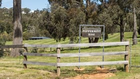 Rural / Farming commercial property for sale at Taggerty VIC 3714