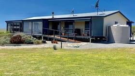 Rural / Farming commercial property for sale at 17499 Flinders Highway Elliston SA 5670