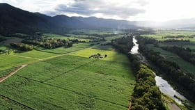 Rural / Farming commercial property for sale at 4815 Mackay-Eungella Road Finch Hatton QLD 4756