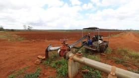 Rural / Farming commercial property for sale at 305 Stockyard  Road North Isis QLD 4660