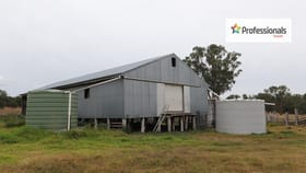 Rural / Farming commercial property for sale at 729 Wallangra Road Inverell NSW 2360