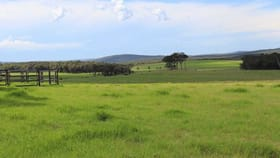 Rural / Farming commercial property for sale at 378 Hazelvale rd North Denmark WA 6333