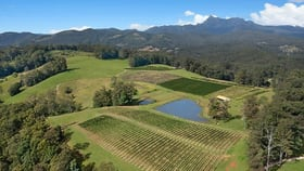 Rural / Farming commercial property for sale at Hopkins Creek NSW 2484