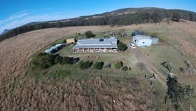 Rural / Farming commercial property for sale at Rosevale QLD 4340