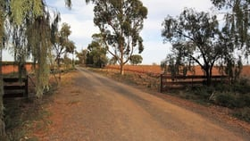 Rural / Farming commercial property for sale at Farm 2360 Kidman Way Warburn NSW 2680
