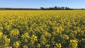 Rural / Farming commercial property for sale at Lot 617 Nambling North Road Dowerin WA 6461