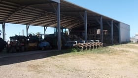 Rural / Farming commercial property for sale at 52 Linton Road Home Hill QLD 4806