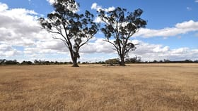 Rural / Farming commercial property for sale at 3 3385 Midland Highway Stanhope VIC 3623