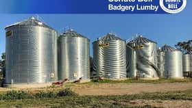 Rural / Farming commercial property for sale at . Road View Narromine NSW 2821