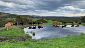 Rural / Farming commercial property for sale at Lot 2 Mount Richard Road Kalgan WA 6330
