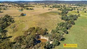 Rural / Farming commercial property for sale at 116 Iron Barks Road Mudgee NSW 2850