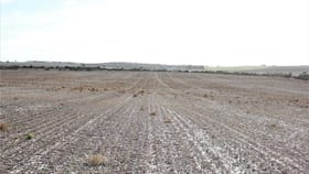 Rural / Farming commercial property sold at A177 Yorke Highway Rogues Point SA 5571