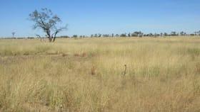 Rural / Farming commercial property for sale at 8339 Ilfracombe Aramac Road Aramac QLD 4726