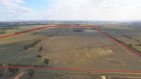 Rural / Farming commercial property for sale at 198 Geodetic Road, Stanhope & Morrissey Road Carag Carag VIC 3623