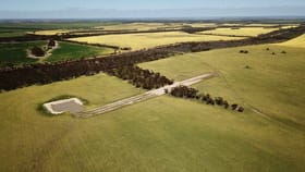 Rural / Farming commercial property for sale at Lot 1784 East Road Pingrup WA 6343