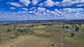 Rural / Farming commercial property for sale at 75 Gregors Road Spring Grove NSW 2470