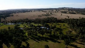 Rural / Farming commercial property for sale at 1194 Cope  Road Mudgee NSW 2850