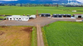 Rural / Farming commercial property for sale at 91 West Minstone Road Scottsdale TAS 7260