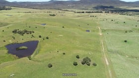Rural / Farming commercial property for sale at Cooma Road Braidwood NSW 2622