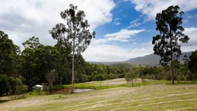 Rural / Farming commercial property for sale at 191 Eglinford Lane Congewai NSW 2325