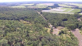 Rural / Farming commercial property for sale at Lot 9 Studs Road Coolbie QLD 4850