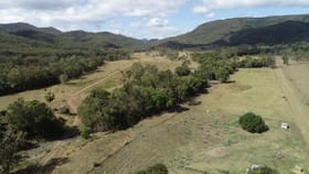Rural / Farming commercial property for sale at 153 RASMUSSENS ROAD Clairview QLD 4741