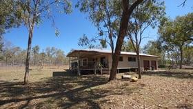 Rural / Farming commercial property for sale at 729 Tinaroo Creek Road Mareeba QLD 4880