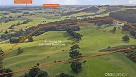 Rural / Farming commercial property for sale at 184 Youngs Road Irishtown TAS 7330