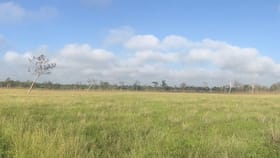 Rural / Farming commercial property for sale at 2839 NIALL ROAD Basalt QLD 4820