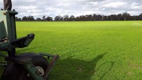 Rural / Farming commercial property sold at Lot 429 Hazels Road Naracoorte SA 5271