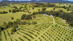 Rural / Farming commercial property for sale at 223 Congarinni Road South Congarinni NSW 2447
