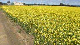 Rural / Farming commercial property for sale at LOT 612 NAMBLING NORTH ROAD Dowerin WA 6461