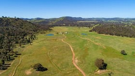 Rural / Farming commercial property for sale at 266 Gum Gully Road Gulgong NSW 2852