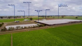 Rural / Farming commercial property for sale at 1557 O'Dea Road Koyuga VIC 3622
