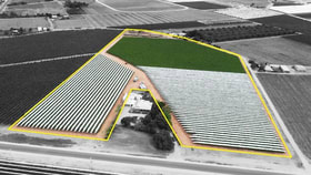 Rural / Farming commercial property for sale at Lot 1/447 River Avenue Merbein South VIC 3505