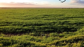 Rural / Farming commercial property for sale at 714-960 Harry Butler Road & 4 Honner Road Brentwood SA 5575