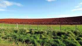 Rural / Farming commercial property for sale at 190-327 Nook Road Sheffield TAS 7306