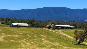 Rural / Farming commercial property for sale at 2603 Snowy Mountains Highway Bemboka NSW 2550