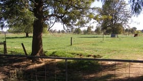 Rural / Farming commercial property for sale at 2090 McBain Road Koyuga VIC 3622