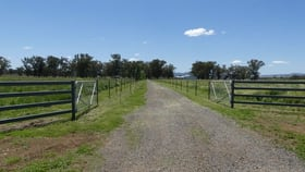 Rural / Farming commercial property for sale at Currawong/4978 Werris Creek Rd Tamworth NSW 2340