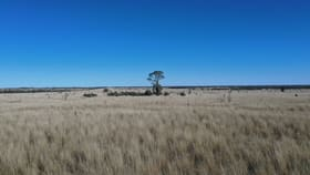Rural / Farming commercial property for sale at 0 Mount Tabor Road Augathella QLD 4477