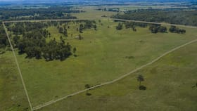 Rural / Farming commercial property for sale at 425 Old Dyraaba Road Woodview NSW 2470