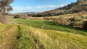 Rural / Farming commercial property for sale at Willowie 5 Mile Creek Road Gundagai NSW 2722